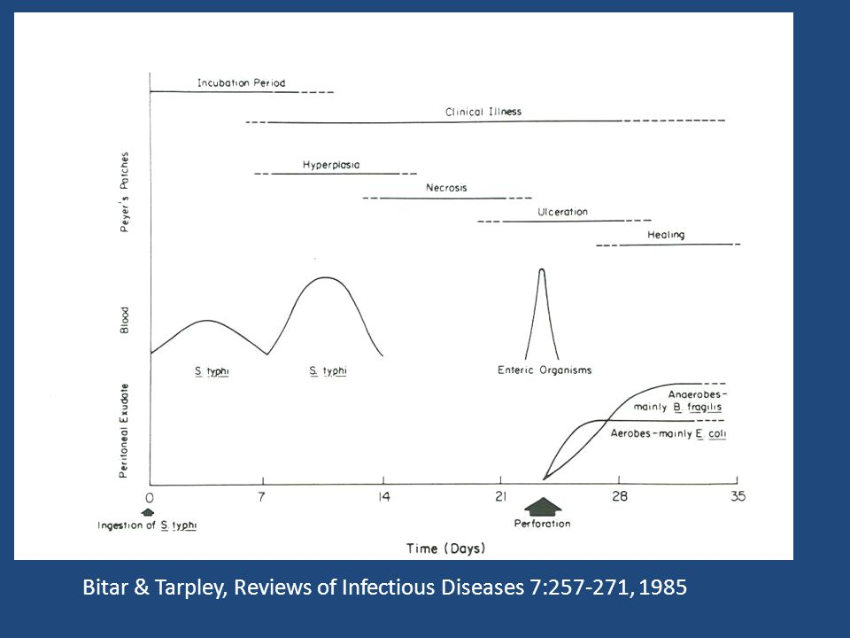 Bitar & Tarpley, Reviews of Infectious Diseases 7:257-271, 1985 Typhoid Fever