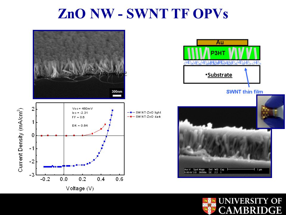 ZnO NW - SWNT TF OPVs Substrate 100 mW/cm 2
