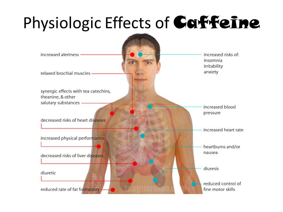 Physiologic Effects of Caffeine