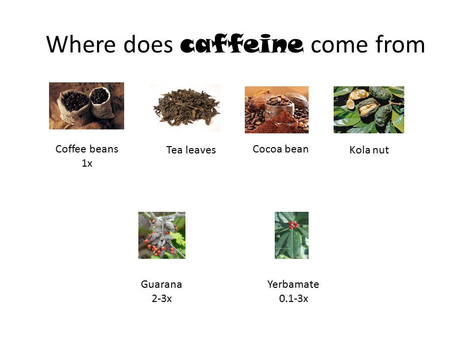 Where does caffeine come from Guarana 2-3x Kola nut Yerbamate 0.1-3x Coffee beans 1x Cocoa bean Tea leaves