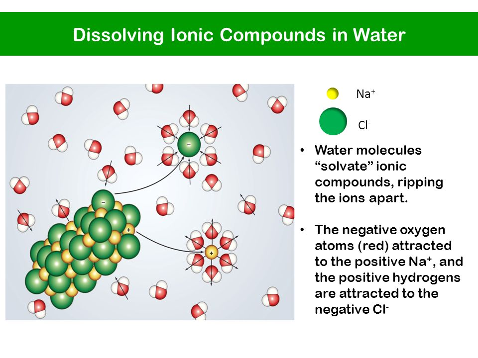 Water molecules solvate ionic compounds, ripping the ions apart.