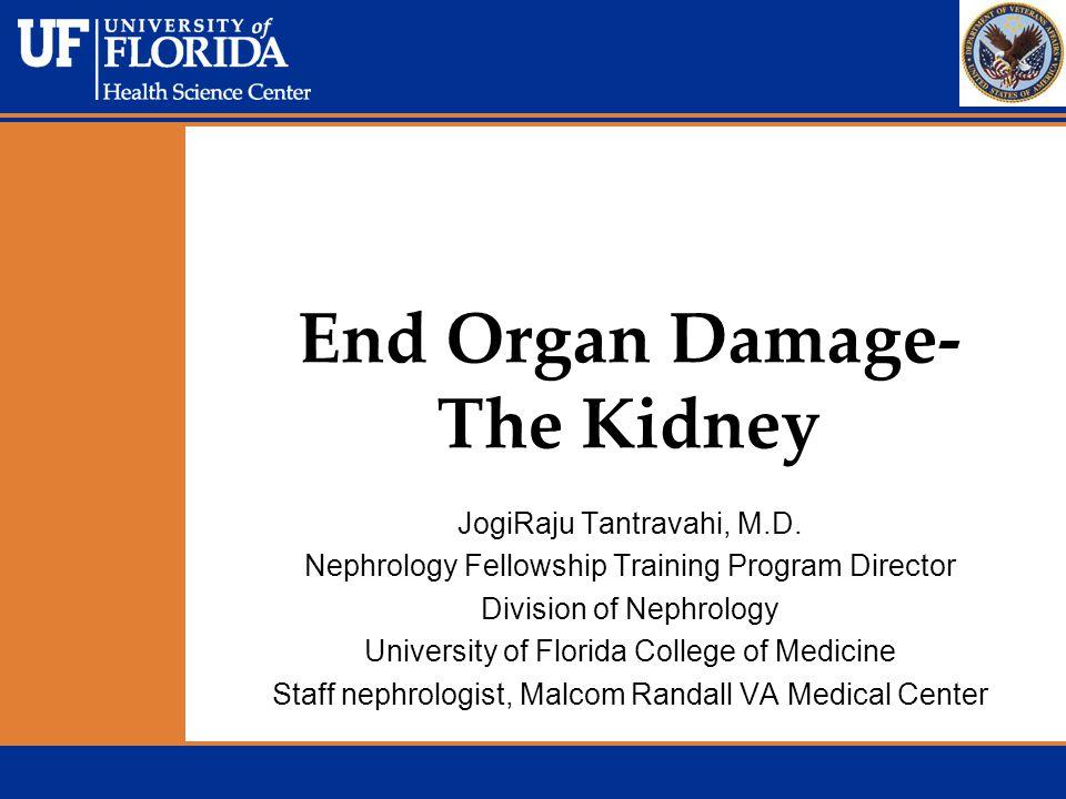 End Organ Damage- The Kidney JogiRaju Tantravahi, M.D. Nephrology Fellowship Training Program Director Division of Nephrology University of Florida Co