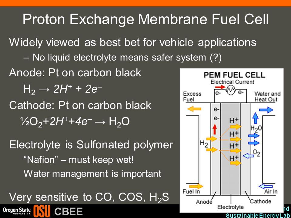 Advanced Materials and Sustainable Energy Lab CBEE Proton Exchange Membrane Fuel Cell Widely viewed as best bet for vehicle applications –No liquid el
