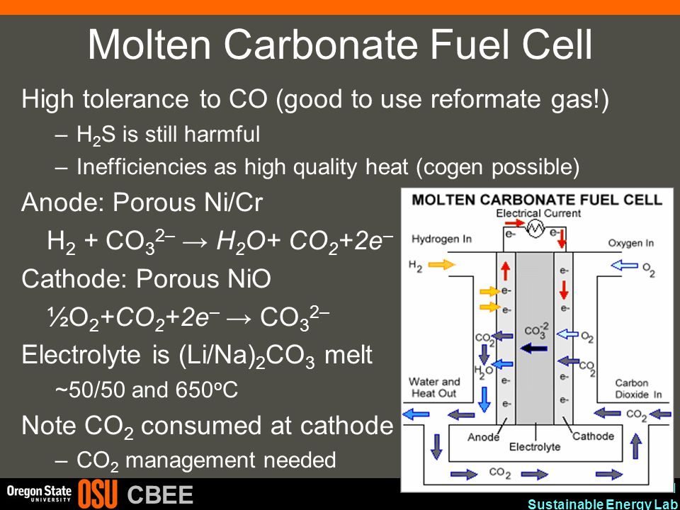 Advanced Materials and Sustainable Energy Lab CBEE Molten Carbonate Fuel Cell High tolerance to CO (good to use reformate gas!) –H 2 S is still harmfu