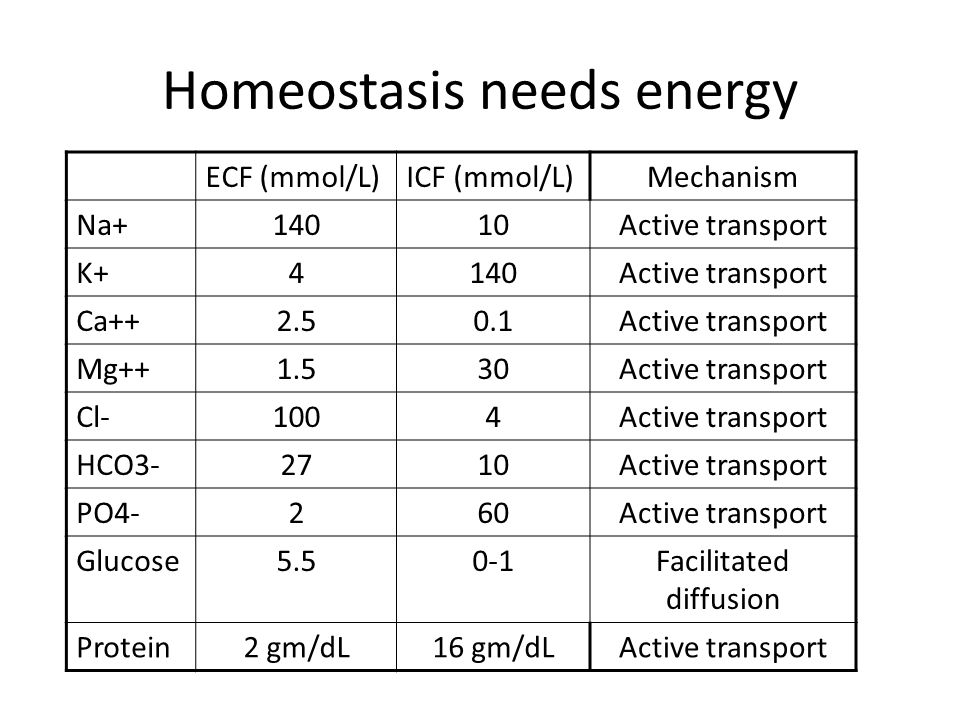 Homeostasis needs energy ECF (mmol/L)ICF (mmol/L)Mechanism Na+14010Active transport K+4140Active transport Ca++2.50.1Active transport Mg++1.530Active