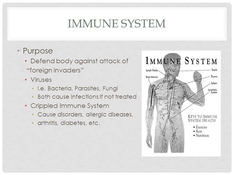IMMUNE SYSTEM Purpose Defend body against attack of foreign invaders Viruses I.e.