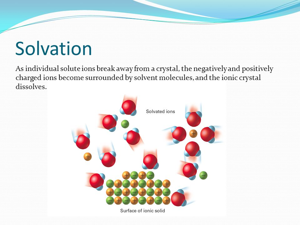 Solvation As individual solute ions break away from a crystal, the negatively and positively charged ions become surrounded by solvent molecules, and