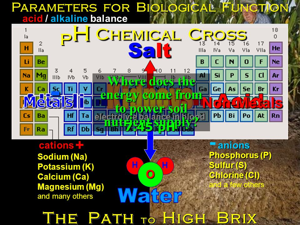 Salt Sodium (Na) Potassium (K) Calcium (Ca) Magnesium (Mg) and many others H H O Phosphorus (P) Sulfur (S) Chlorine (Cl) and a few others Parameters for Biological Function Chemical Cross - acid / alkaline balance pHpHpHpH + The Path to High Brix electrolyte balance in blood Where does the energy come from to power soil nutrient supply.