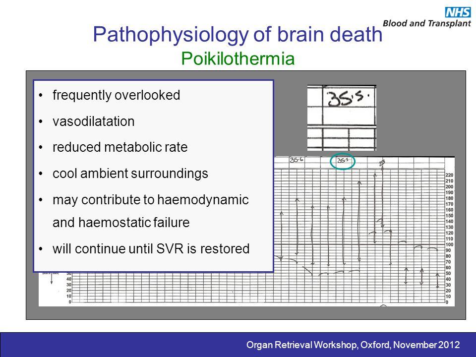 Organ Retrieval Workshop, Oxford, November 2012 Pathophysiology of brain death Poikilothermia frequently overlooked vasodilatation reduced metabolic r