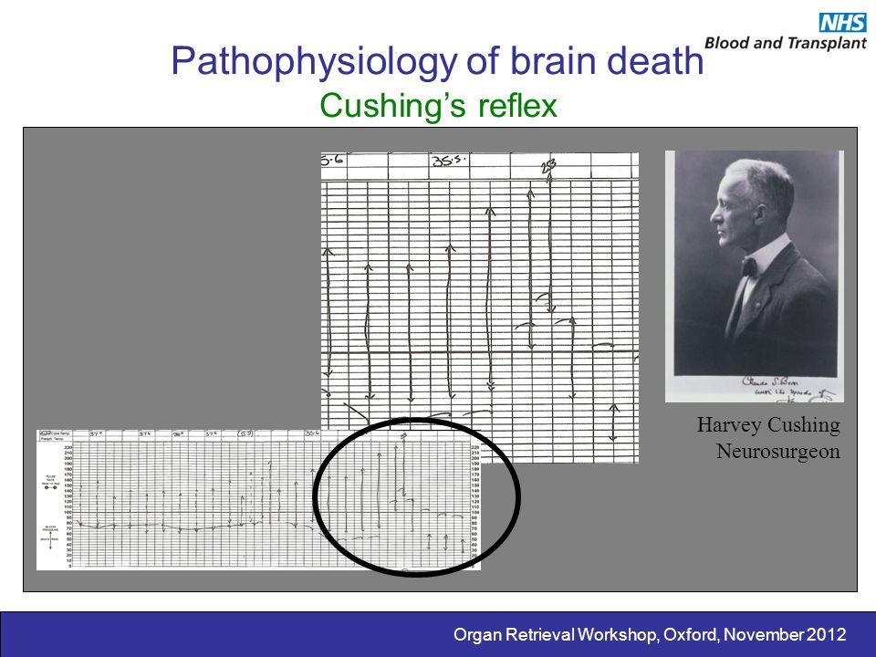 Organ Retrieval Workshop, Oxford, November 2012 Pathophysiology of brain death Cushing's reflex Harvey Cushing Neurosurgeon