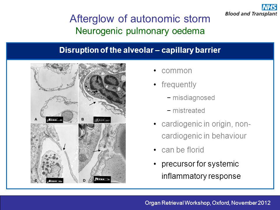 Organ Retrieval Workshop, Oxford, November 2012 Afterglow of autonomic storm Neurogenic pulmonary oedema Disruption of the alveolar – capillary barrie