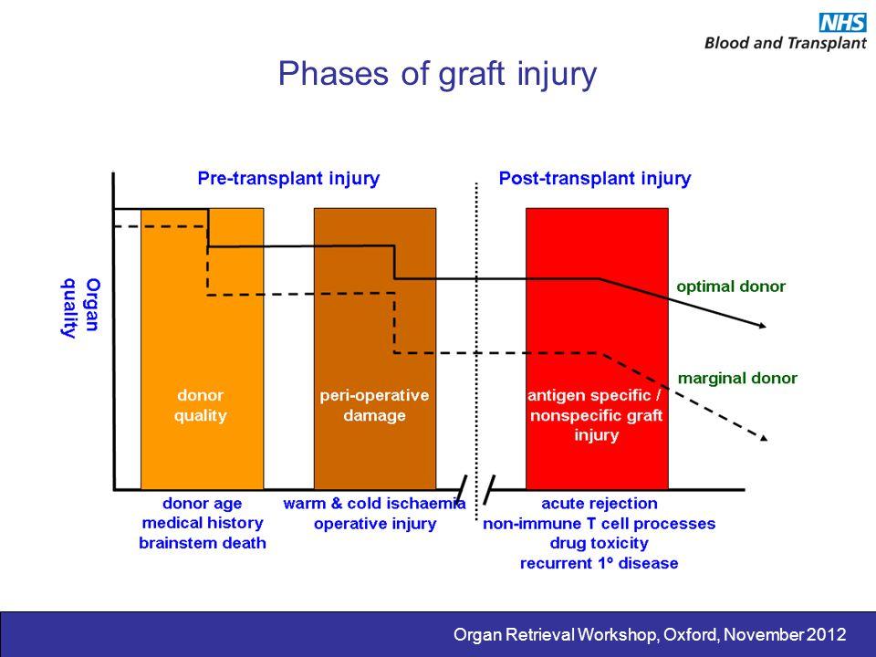Organ Retrieval Workshop, Oxford, November 2012 Phases of graft injury