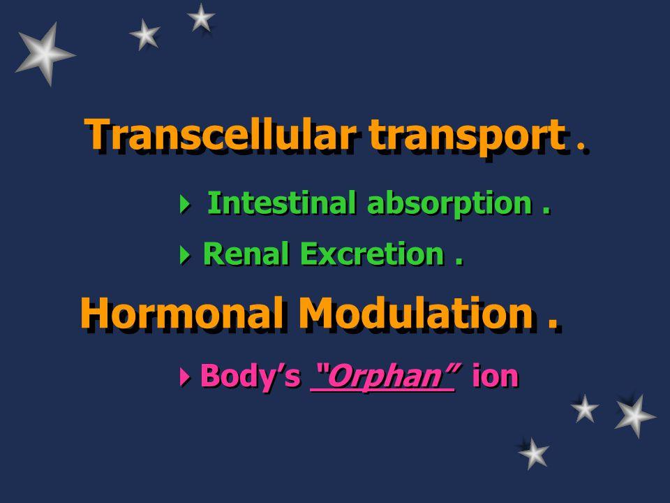 Transcellular transport.  Intestinal absorption.