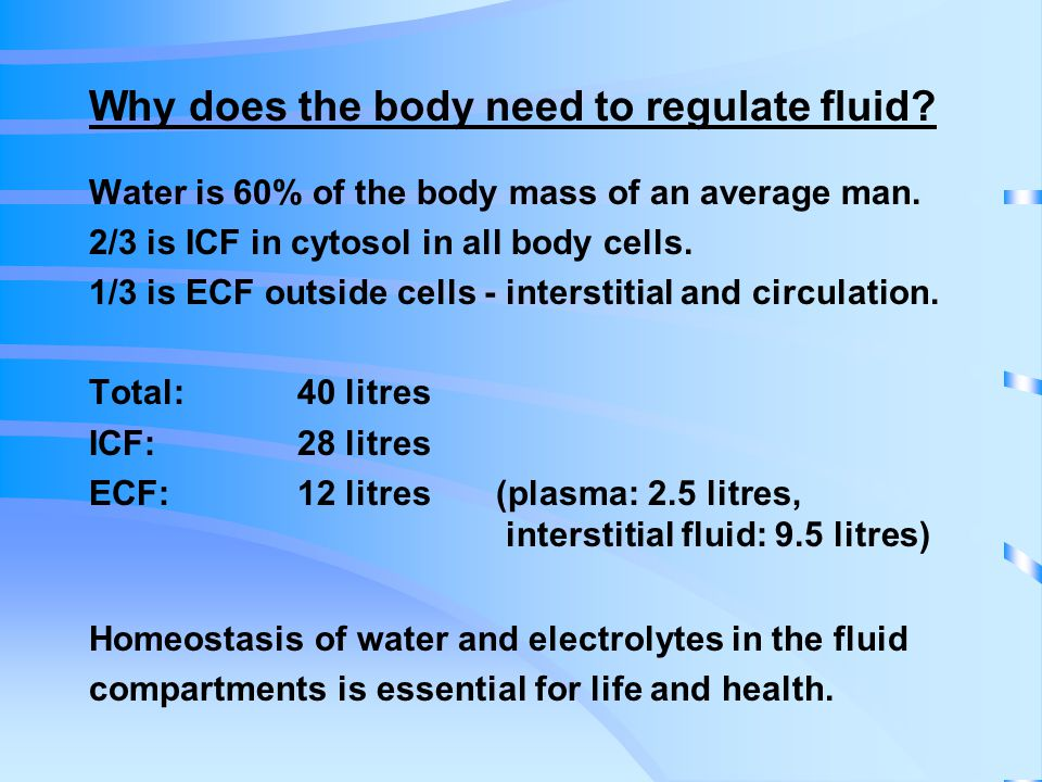 Why does the body need to regulate fluid. Water is 60% of the body mass of an average man.
