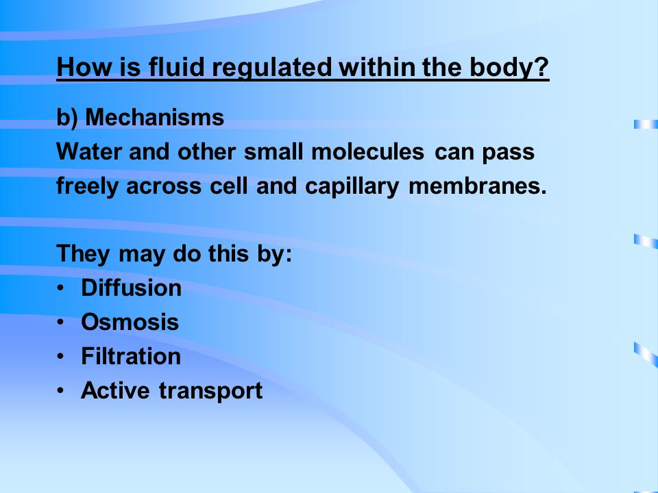 How is fluid regulated within the body.