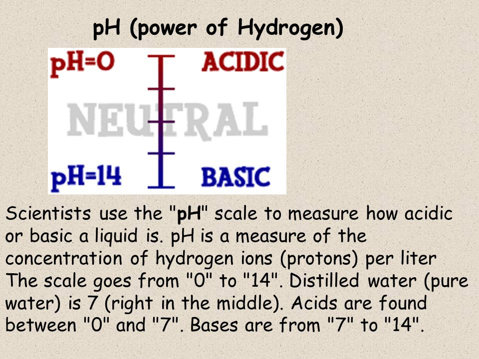 Scientists use the pH scale to measure how acidic or basic a liquid is.