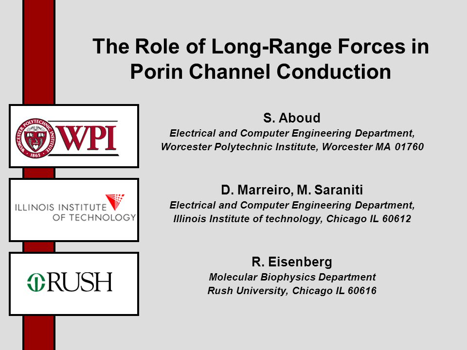 The Role of Long-Range Forces in Porin Channel Conduction S.