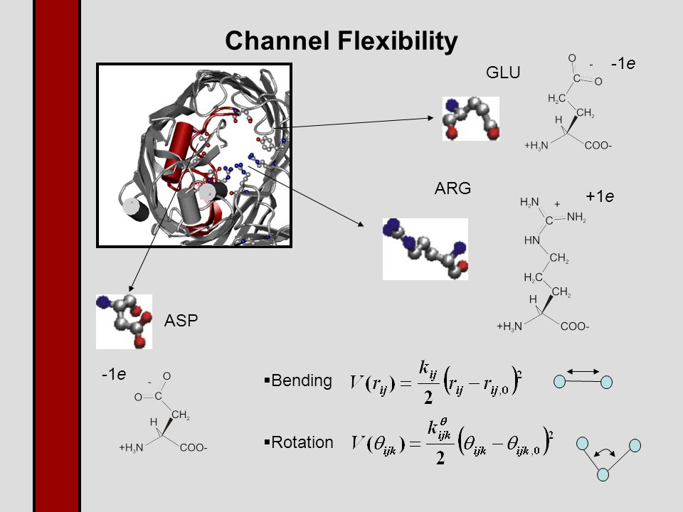 Channel Flexibility ARG GLU ASP  Bending  Rotation -1e +1e -1e