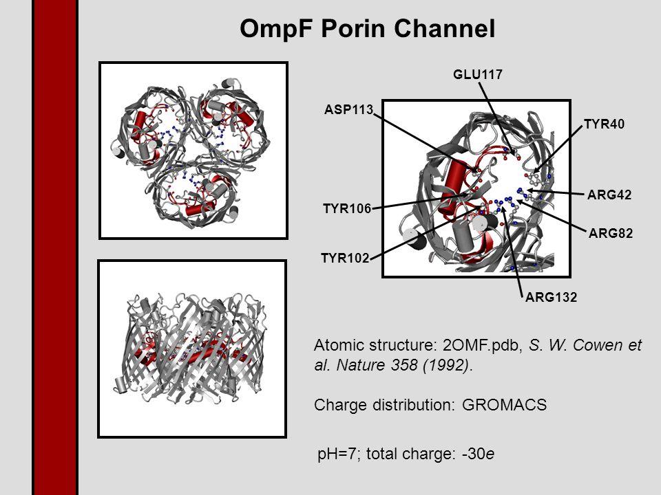 OmpF Porin Channel TYR40 ARG42 ARG82 ARG132 TYR102 TYR106 ASP113 GLU117 Atomic structure: 2OMF.pdb, S.