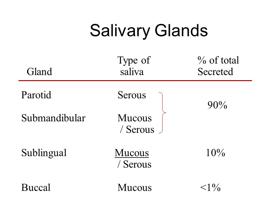 Salivary Glands Type of % of total Gland saliva Secreted Parotid Serous Submandibular Mucous / Serous Sublingual Mucous 10% / Serous Buccal Mucous <1% 90%