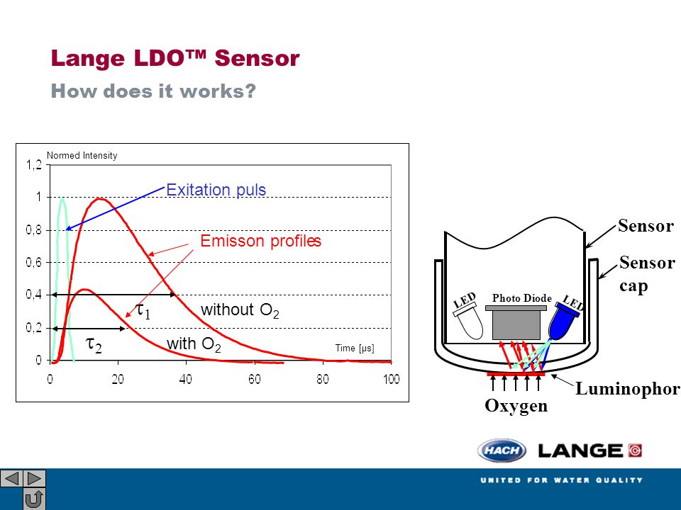 Lange LDO™ Sensor How does it works.