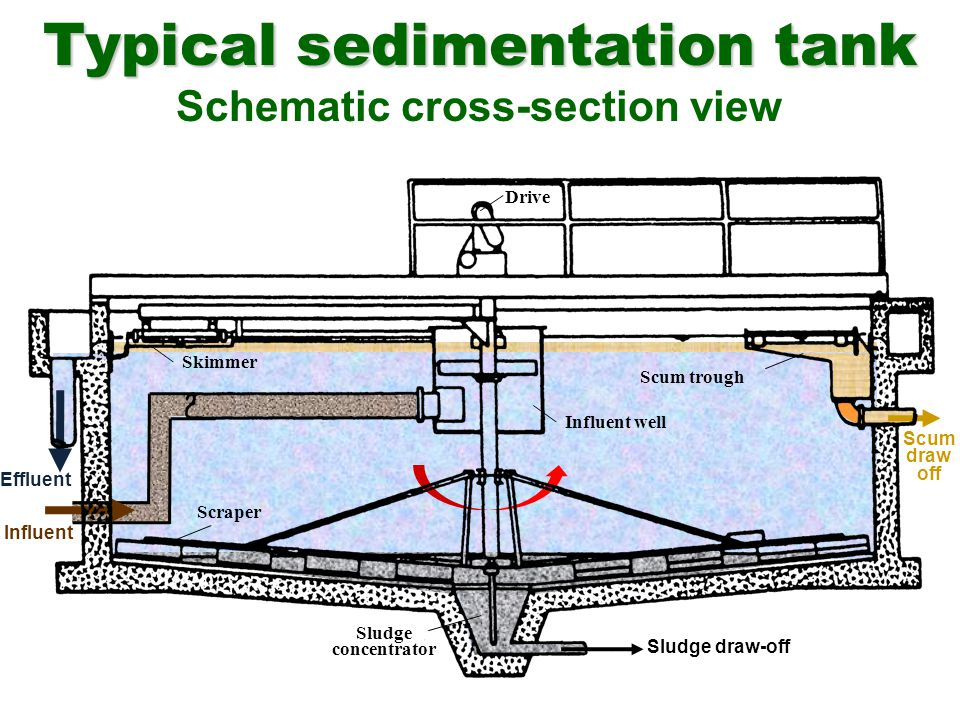 Typical sedimentation tank Schematic cross-section view Influent Influent well Skimmer Scum trough Scraper Sludge concentrator Drive Effluent Scum dra