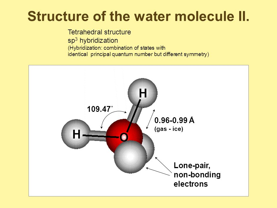 Physical properties of water IV.