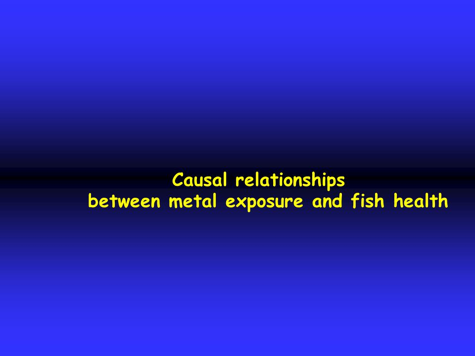 Causal relationships between metal exposure and fish health