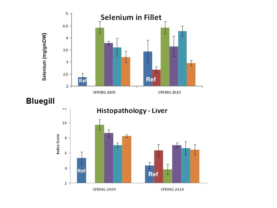 Selenium (mg/gmDW ) Bluegill Ref