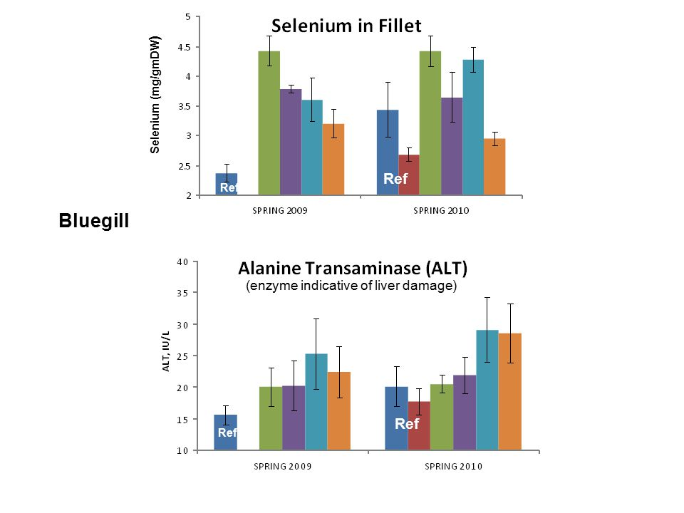 Selenium (mg/gmDW ) (enzyme indicative of liver damage) Bluegill Ref
