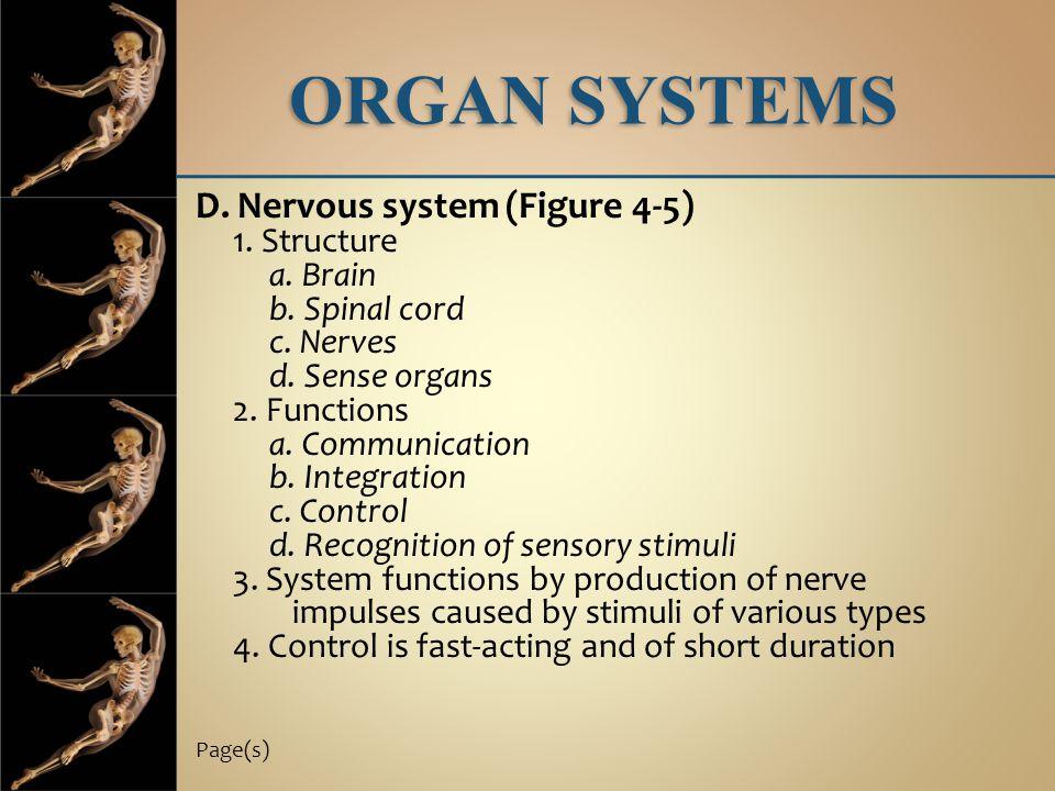 ORGAN SYSTEMS D. Nervous system (Figure 4-5) 1. Structure a. Brain b. Spinal cord c. Nerves d. Sense organs 2. Functions a. Communication b. Integrati