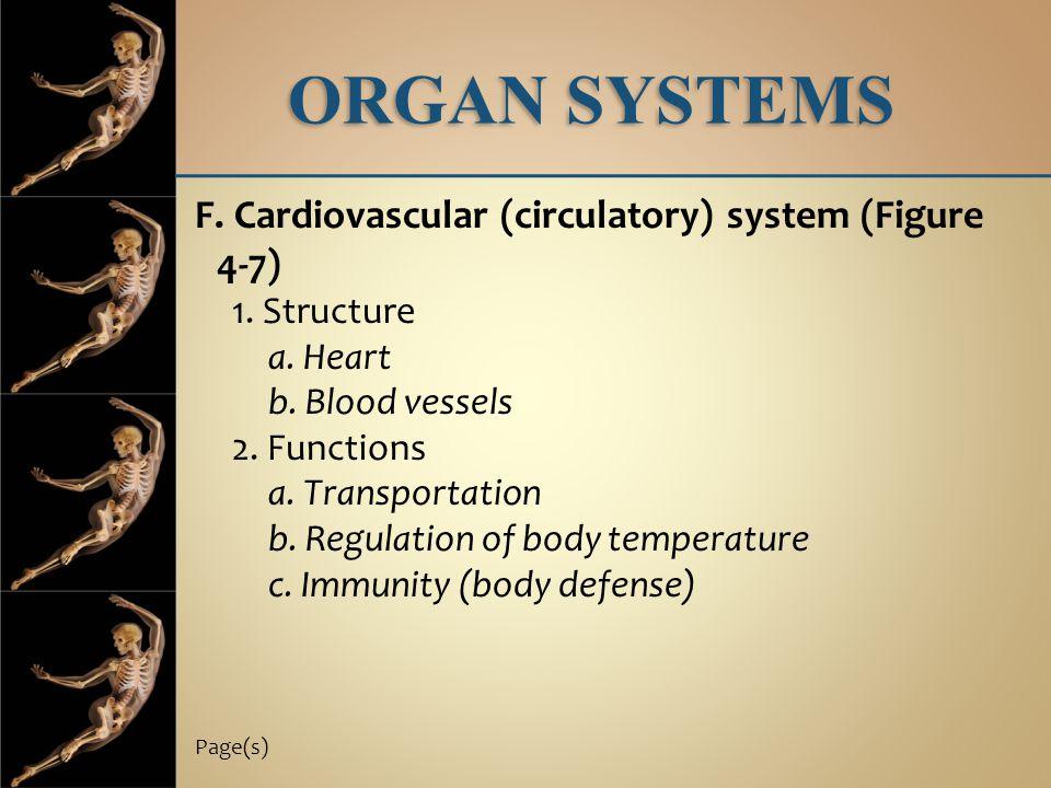 ORGAN SYSTEMS F. Cardiovascular (circulatory) system (Figure 4-7) 1. Structure a. Heart b. Blood vessels 2. Functions a. Transportation b. Regulation