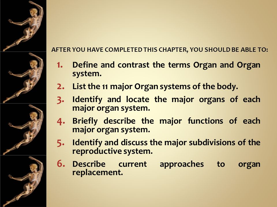 AFTER YOU HAVE COMPLETED THIS CHAPTER, YOU SHOULD BE ABLE TO: 1. Define and contrast the terms Organ and Organ system. 2. List the 11 major Organ syst