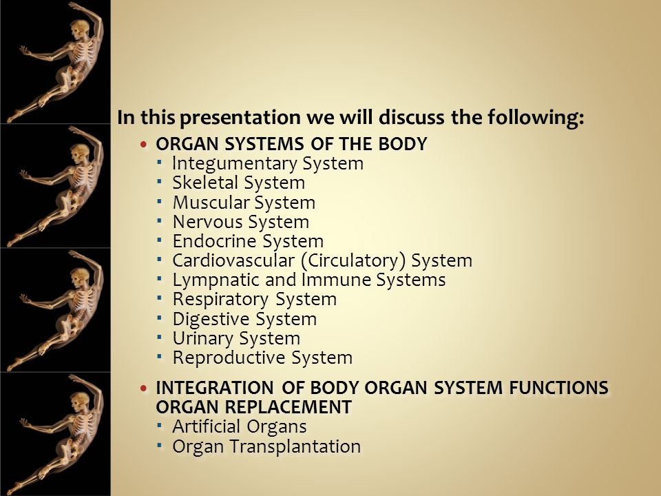 In this presentation we will discuss the following: ORGAN SYSTEMS OF THE BODY  lntegumentary System  Skeletal System  Muscular System  Nervous Sys