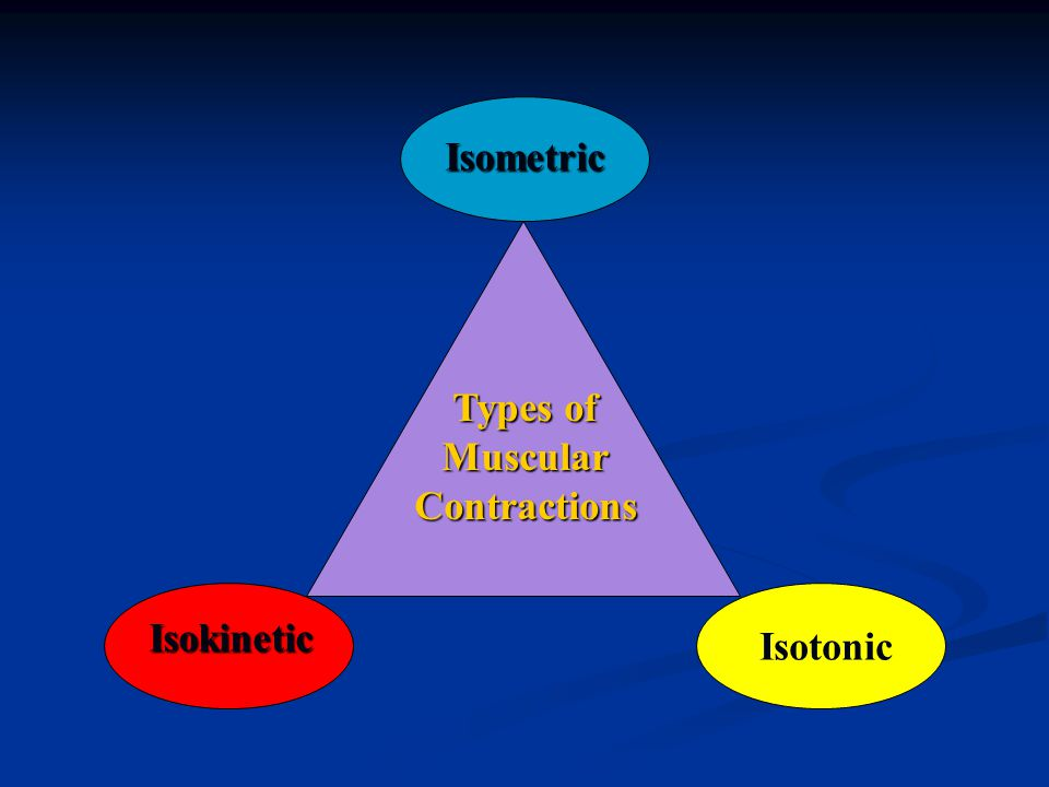 Types of MuscularContractions Isometric Isokinetic Isotonic