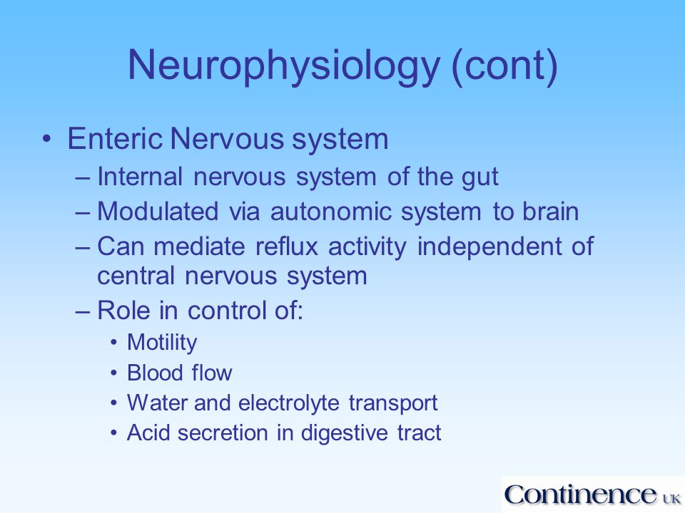 Neurophysiology (cont) Enteric Nervous system –Internal nervous system of the gut –Modulated via autonomic system to brain –Can mediate reflux activity independent of central nervous system –Role in control of: Motility Blood flow Water and electrolyte transport Acid secretion in digestive tract