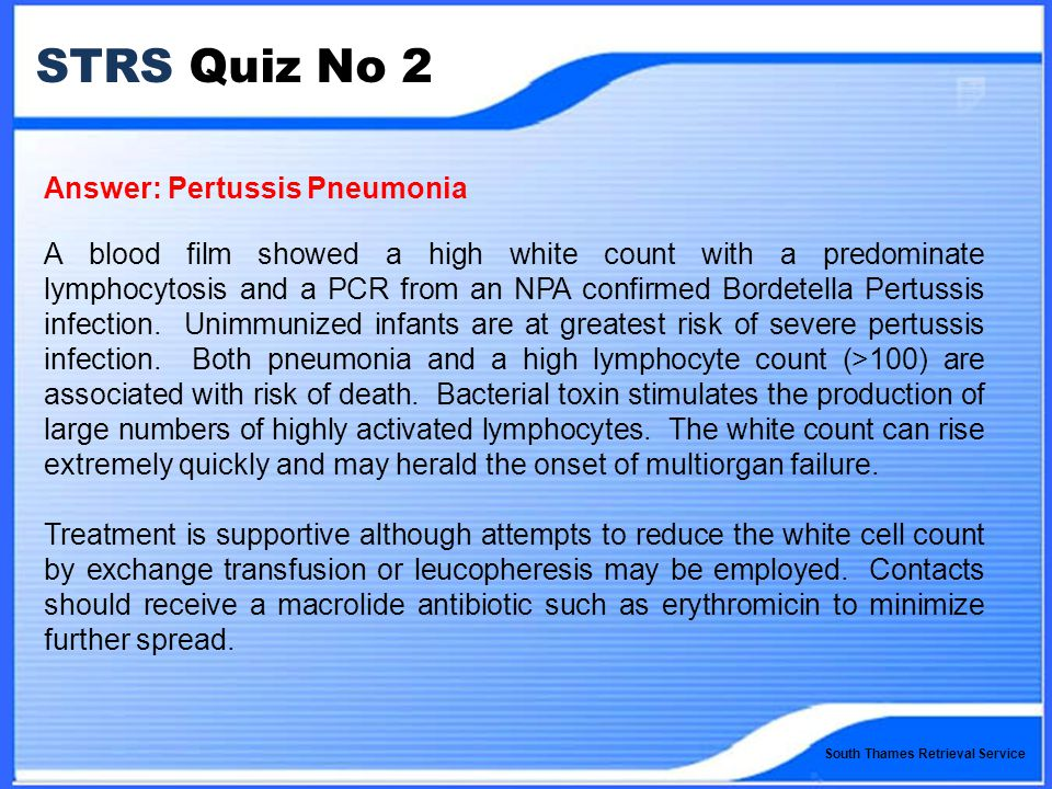 South Thames Retrieval Service STRS Quiz No 2 Answer: Pertussis Pneumonia A blood film showed a high white count with a predominate lymphocytosis and a PCR from an NPA confirmed Bordetella Pertussis infection.