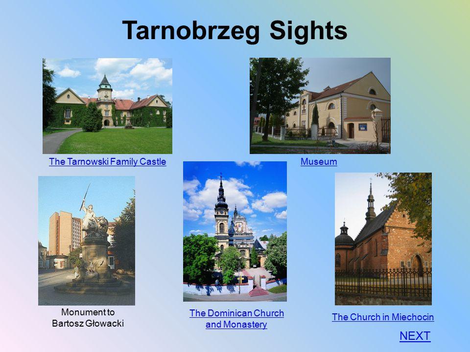 Tarnobrzeg Sights The Tarnowski Family Castle Museum The Dominican Church and Monastery The Church in Miechocin NEXT Monument to Bartosz Głowacki