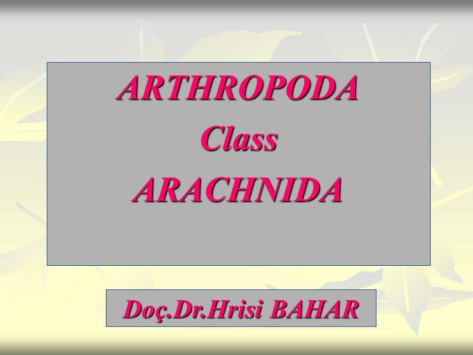 ARTHROPODAClassARACHNIDA Doç.Dr.Hrisi BAHAR