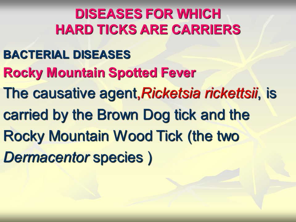 DISEASES FOR WHICH HARD TICKS ARE CARRIERS BACTERIAL DISEASES BACTERIAL DISEASES Rocky Mountain Spotted Fever The causative agent,Ricketsia rickettsii