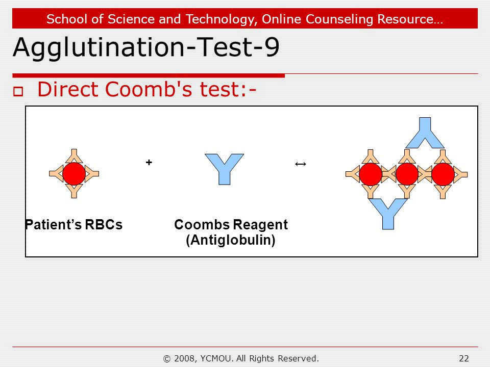 School of Science and Technology, Online Counseling Resource… © 2008, YCMOU. All Rights Reserved.22 Agglutination-Test-9  Direct Coomb's test:- + ↔ P