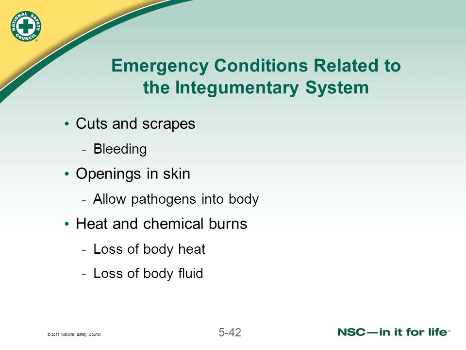 © 2011 National Safety Council 5-42 Emergency Conditions Related to the Integumentary System Cuts and scrapes -Bleeding Openings in skin -Allow pathog
