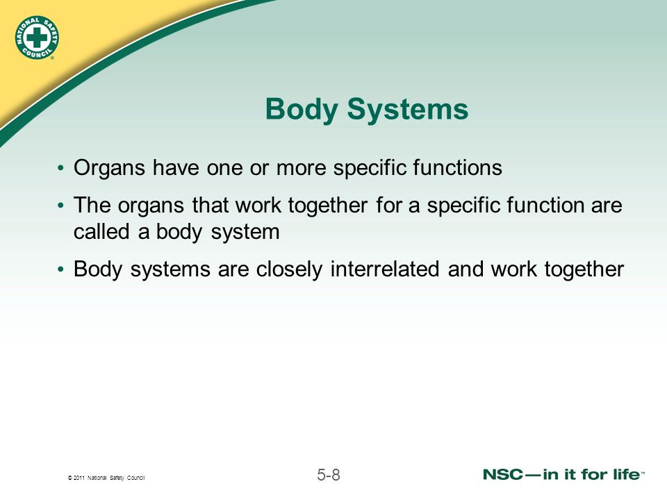 © 2011 National Safety Council 5-8 Body Systems Organs have one or more specific functions The organs that work together for a specific function are called a body system Body systems are closely interrelated and work together