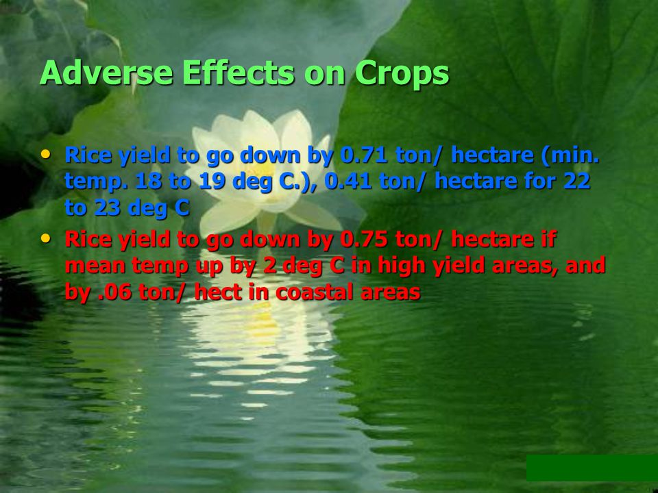 Adverse Effects on Crops Rice yield to go down by 0.71 ton/ hectare (min.