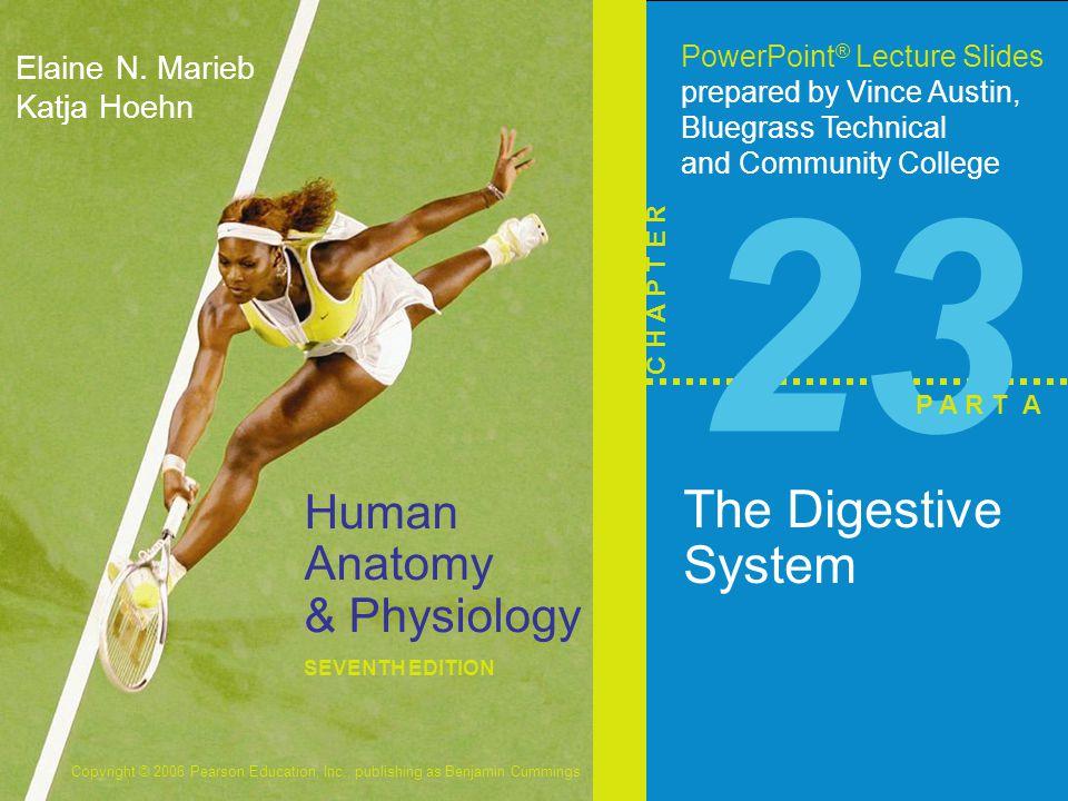 Copyright © 2006 Pearson Education, Inc., publishing as Benjamin Cummings Human Anatomy & Physiology SEVENTH EDITION Elaine N. Marieb Katja Hoehn Powe