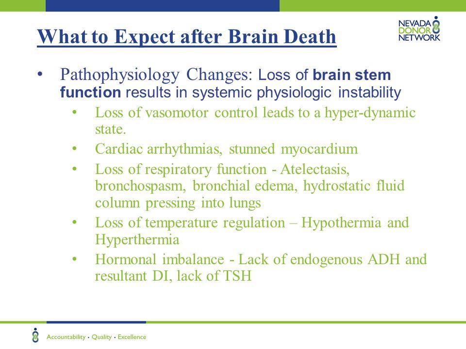What to Expect after Brain Death Pathophysiology Changes: Loss of brain stem function results in systemic physiologic instability Loss of vasomotor co