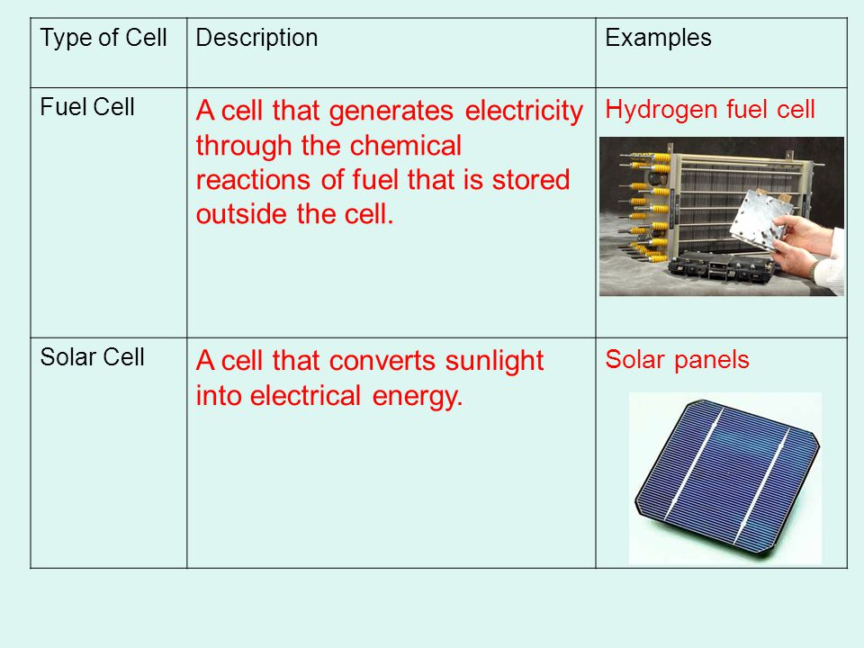 Type of CellDescriptionExamples Fuel Cell A cell that generates electricity through the chemical reactions of fuel that is stored outside the cell.