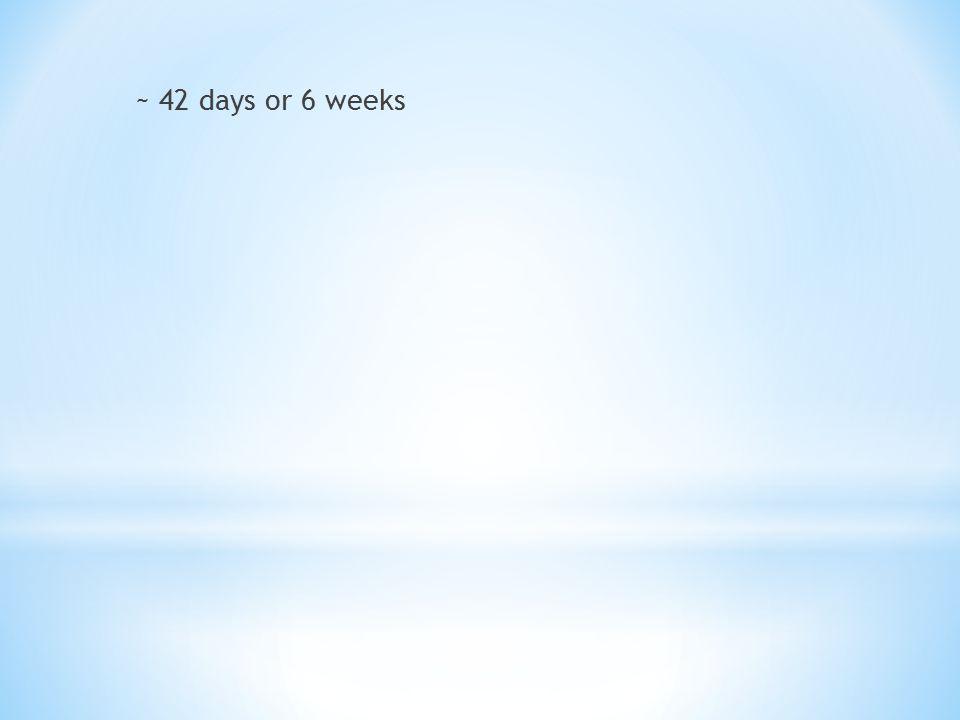 ~ 42 days or 6 weeks