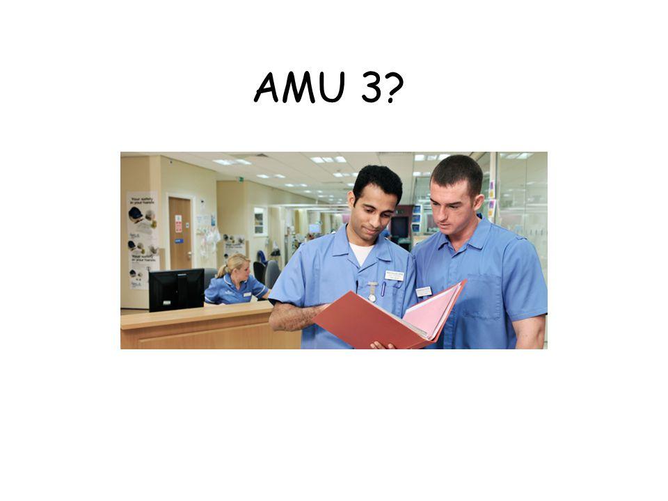 AMU 3