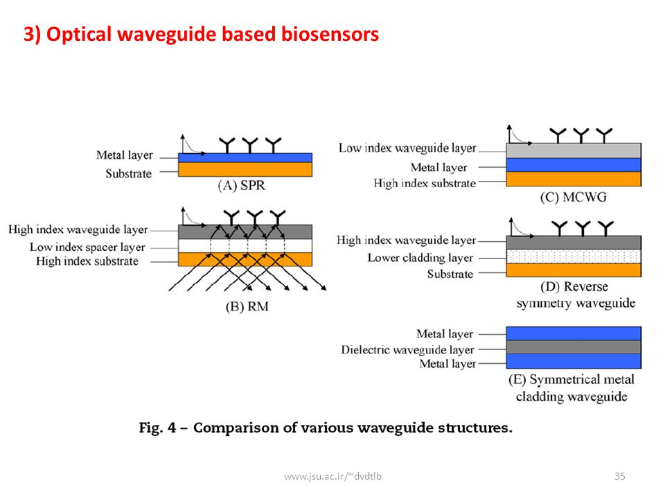 www.jsu.ac.ir/~dvdtlb35 3) Optical waveguide based biosensors